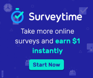 surveytime survey online